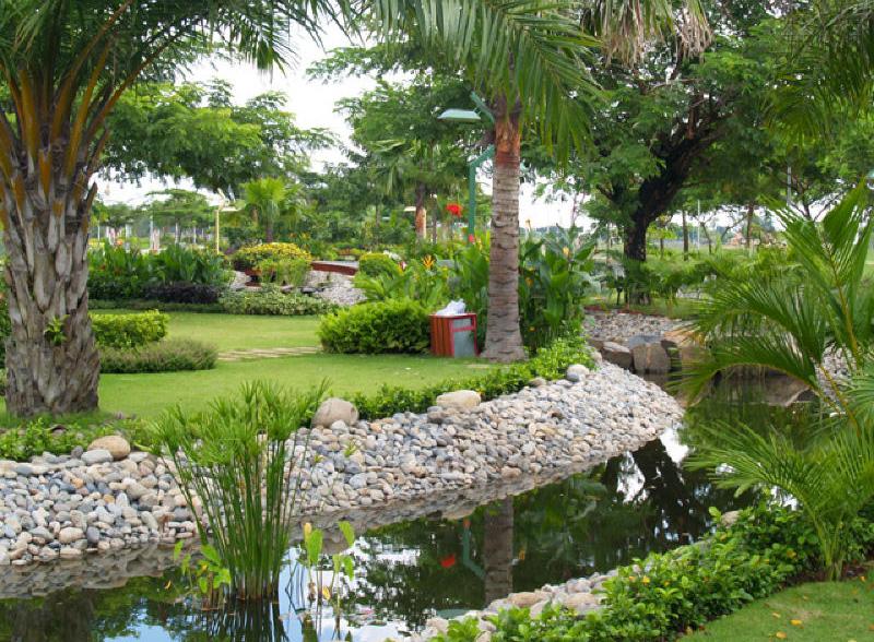 Địa điểm chụp hình cưới: khu vực Phú Mỹ Hưng Quận 7